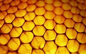 Honeycomb wallpaper ·① Download free beautiful HD ...  Honeycomb