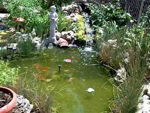 Estanque de jardin con cascada y peces YouTube