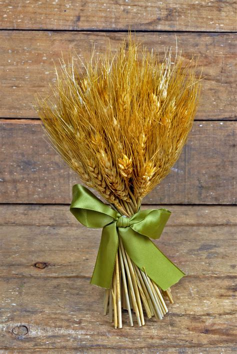 natural preserved wheat bouquet