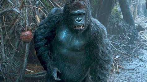 speak  caesar dawn   planet   apes