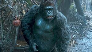 """""""I Need to Speak to Caesar"""" DAWN OF THE PLANET OF THE APES ..."""