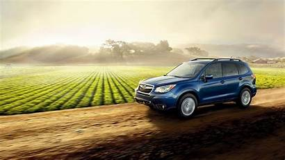 Subaru Forester Wallpapers Android Wrx Farm Organic