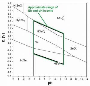 Mine Reclamation  Disequilibrium  And Selenium