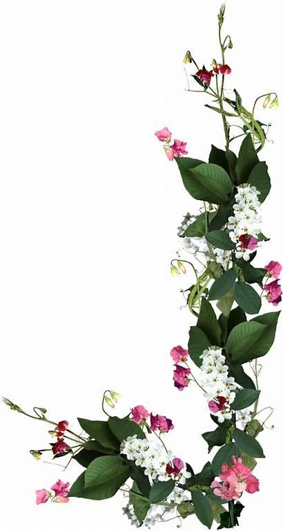Flores Flowers Ramo Transparente Pngkit Ramos Florida