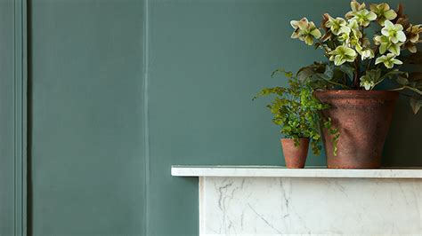 distemper paint breathable interior paint  greene