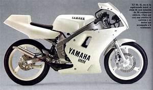 Re  Need Help Getting Parts For A Yamaha Tz50 Moto Gp Bike
