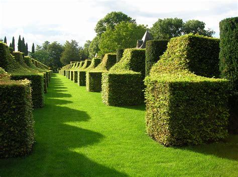 Topiary : Oklahoma Gardener Web Articles