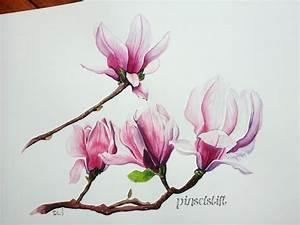 Aquarell Blumen Malen : magnolien aquarell flowers in watercolour ~ Frokenaadalensverden.com Haus und Dekorationen