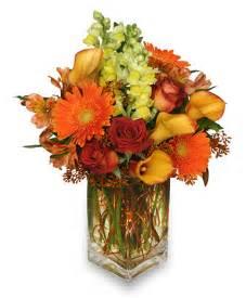 autumn adventure arrangement thanksgiving flower shop network