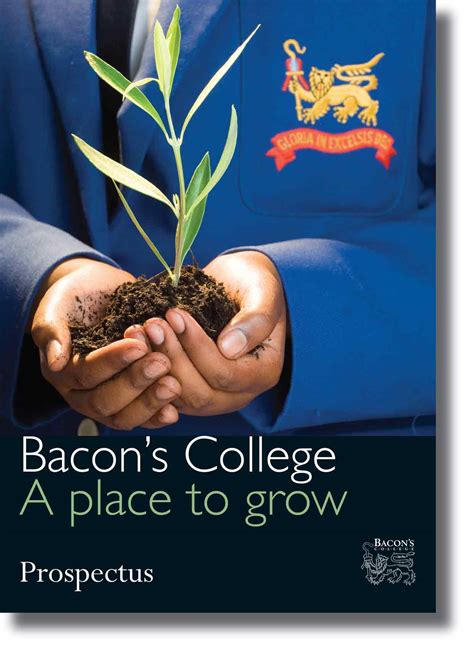 ideology design branding bacons college logo identityprospectus  publications toolkit