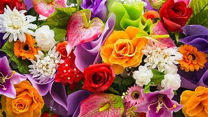 Flowers Meaning Around Flower Global Expatica Relations