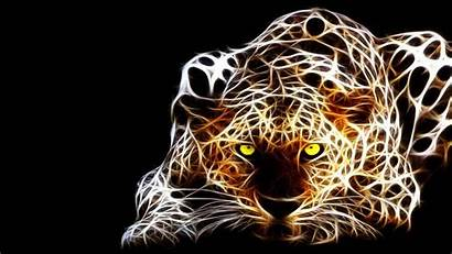 Tiger 3d Wallpapers Background Animated Animal Backgrounds