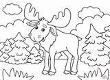 Coloring Moose Printable Dot sketch template