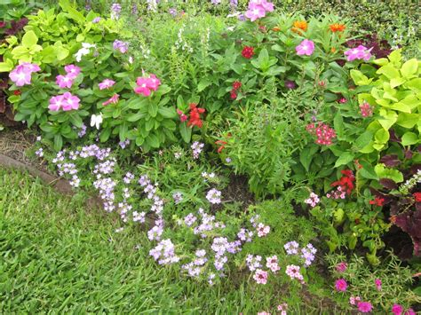 the other houston bungalow cottage garden flowers for