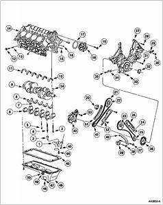Service Manual  2009 Lincoln Mkx Engine Timing Chain Diagram Installation