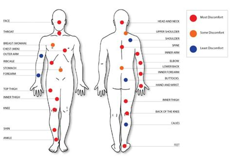 tattoo pain chart  wallpaper  tattoo pain chart