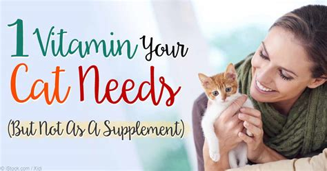 vitamin  levels  cats  life threatening conditions