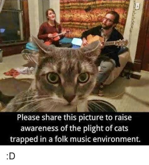 Cat Trap Meme - 25 best memes about cat trap cat trap memes