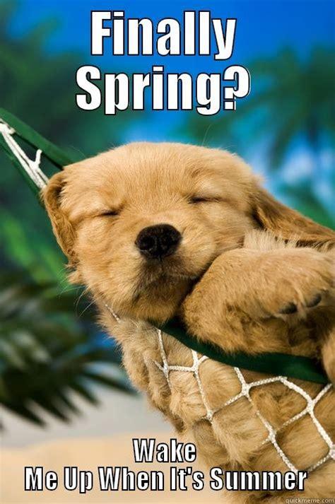Finally Spring Quickmeme
