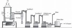 Biomass Downdraft Gasifier Controller Using Intelligent