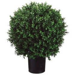 24h x 18w inch artificial boxwood potted lpb446 gr