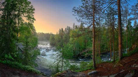 Finland, Forest, Trees, River, Nature Landscape 640x1136 Iphone 5/5s/5c/se Wallpaper, Background Iphone 6 Qi Charger Case 128gb Egypt White Gold Same As 8 Globe Plan Plus Weight For Sale In Karachi X
