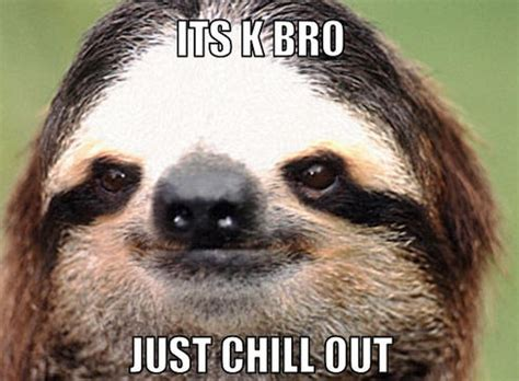 Chill Out Meme - jimmyfungus com the best of sloths the best collection of sloth memes and sloth gifs the