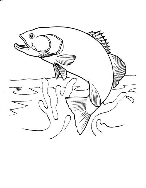 Coloring Fish by Free Printable Fish Coloring Pages For Blanks Black