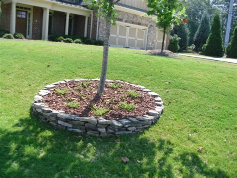 tree ring traditional atlanta   towne landscape