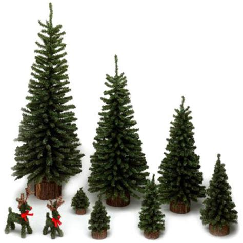 Pre Lit Entryway Christmas Trees by Mini Fake Christmas Tree Rainforest Islands Ferry