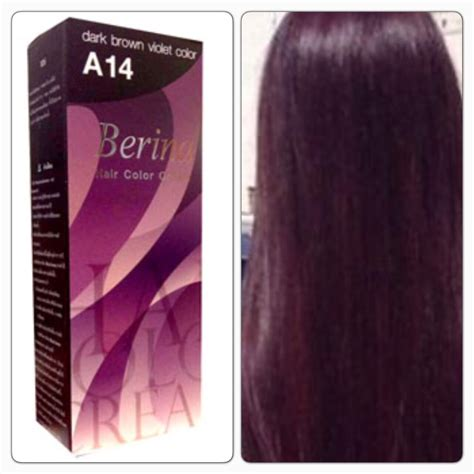 Professional Brown Hair Dye by Berina A14 Brown Violet Hair Color Color