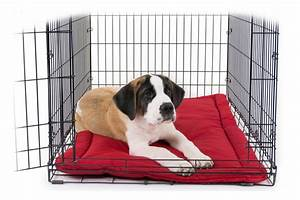 Chew proof tough crate dog beds indestructible dog dog for Tough dog crate beds