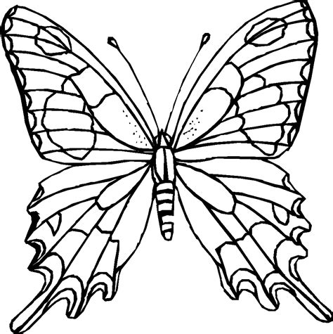 monarch butterfly coloring pages batman coloring pages