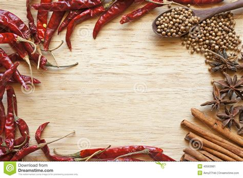 aroma indian cuisine spices and herbs frame stock photo image 40563981