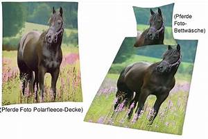Decke Mit Foto : foto bettw sche mit decke pferd auf wiese ~ Sanjose-hotels-ca.com Haus und Dekorationen