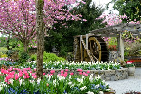 gardening pics the butchart gardens water wheel square spring 2014