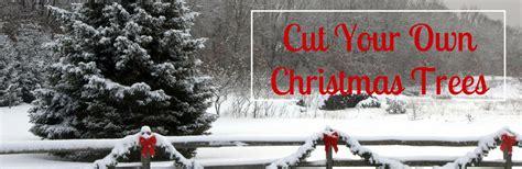 where to cut your own christmas tree near milwaukee