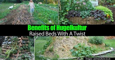 hugelkultur raised beds benefits of hugelkultur raised beds with a twist