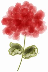 Red geranium clipart - Clipground
