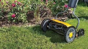 Best Hand Push Lawn Mower Uk 2020  My Top 5 Picks For
