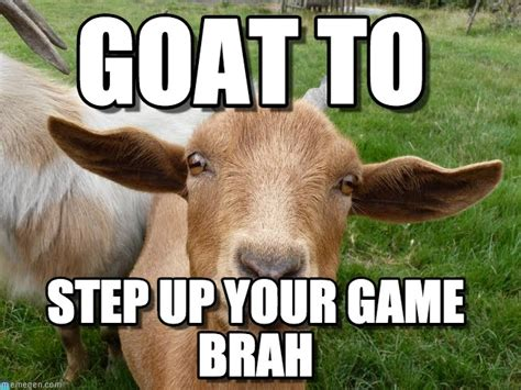 Whatever Floats Your Boat Puns by 25 Extremely Entertaining Goat Memes Sayingimages
