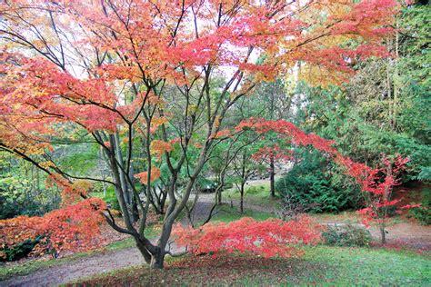 Forstbotanischer Garten Eberswalde  Wandelbar Transition