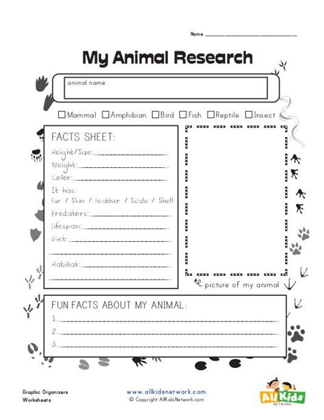 graphic organizer animal research schoolagers animal