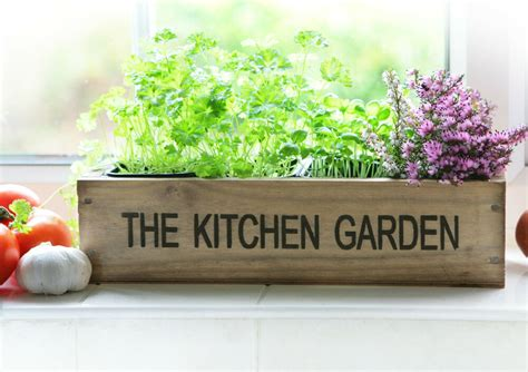 Window Sill Herb Garden Box by Kitchen Herb Wooden Planter Window Sill Box Garden Plant
