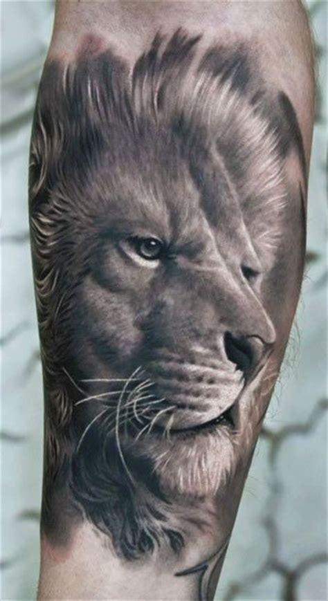 images  lion tattoo  pinterest lion