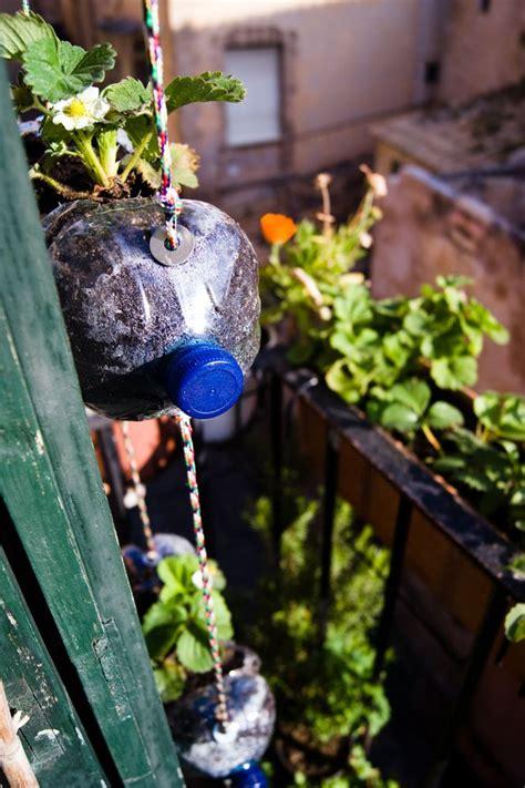 images  huerto casero  pinterest gardens
