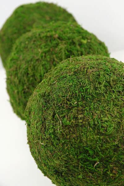 Moss Balls Natural 6in