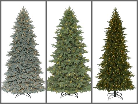 best type of christmas tree wow christmas trees from 20 walmart canada