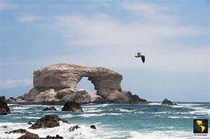 Temuco, Chile en Empresas, hoteles, cafes, bars, restaurantes, spas