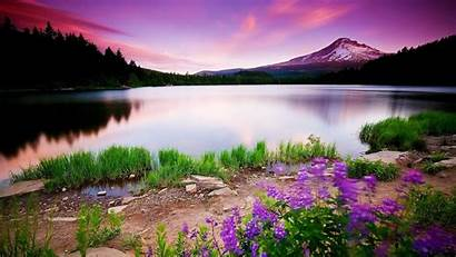 Nature Wallpapers 1080p Heart 1080 Spring Pixelstalk